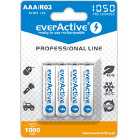 Аккумуляторы АКБ AA/R6 и AAA/R03 EverActive!