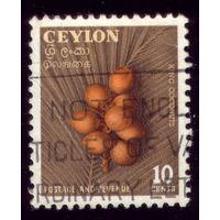 1 марка 1954 год Цейлон Кокосы 281