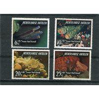 Нидерландские Антиллы. Морская фауна