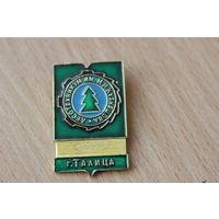 Знак Лесотехникум имени И.М.Кузнецова г.Талица