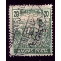 1 марка 1920 год Венгрия 315
