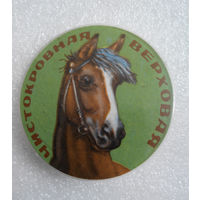 Значок. Лошади. Чистокровная верховая #0143