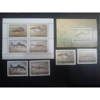Киргизия 1994 Пресноводные рыбы комплект