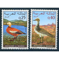 Марокко 1970 Птицы фауна серия 2м MNH