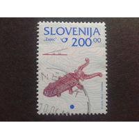 Словения 1998 стандарт Mi-2,0 евро гаш.