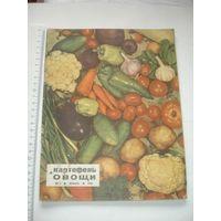 Картофель и овощи 1969г январь
