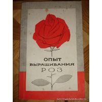 Опыт выращивания роз 1965г