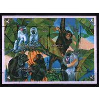2004 Иран Фауна Приматы Блок**