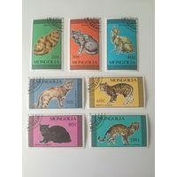 Монголия 1987. Коты. Полная серия
