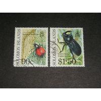 Соломоновы Острова, Жуки (2)