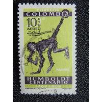 Колумбия 1959г. Фауна.