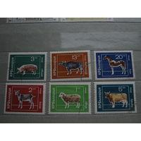 Марки - Болгария, фауна, парнокопытные, крупнорогатые, коровы, лошади, свиньи и др.