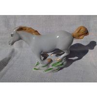 Конь. ЗХК