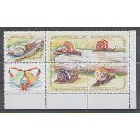 Куба Улитки 2000 год чистая полная серия в сцепке из 5-ти марок и купона