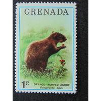 Гренада. Фауна.