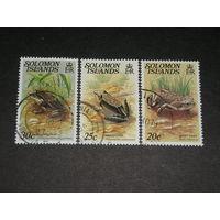 Соломоновы Острова, Лягушки (2)