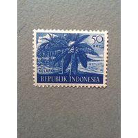 Индонезия. Кокосовая пальма. 1960г. чистая