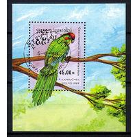 1989 Камбоджа. Попугаи