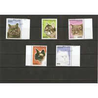 Конго 1996 Кошки 5 марок