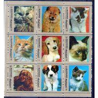 Собаки и кошки  марок Манама