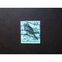 Бельгия 1990 г.Обыкновенный зяблик.