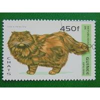 Гвинея 1996г. Фауна.