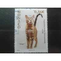 Монако 2009 Межд. выставка кошек в Монте Карло Михель-1,2 евро гаш