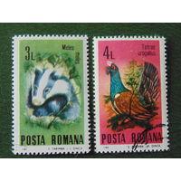 Румыния 1985г. Фауна.