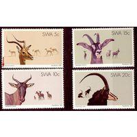 Южная Африка SWA фауна