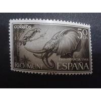 Рио-Муни 1966 Колония Испании слон