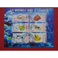 Конго  2010г. Морская фауна.