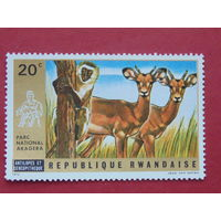 Руанда 1972г. Фауна.