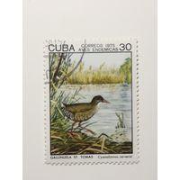 Куба 1975. Птицы.