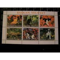 Турменистан фауна Кошки малый лист