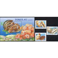 Фауна Раковины Токелау 1996 год 1 чистый блок и 3 марки