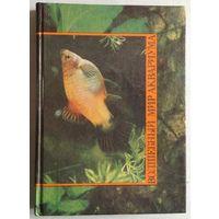 """Иллюстрированная книга """"Волшебный мир аквариума"""""""