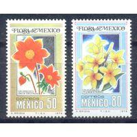 Мексика 1978 Цветы, 2 марки