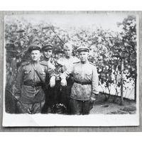Фото группы военных. 1940-е. 4.5х5.5 см