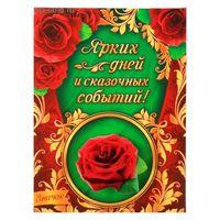 Открытка в комплекте со значком Роза. Ярких дней и сказочных событий.
