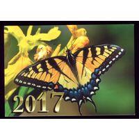 1 календарик 2017 год Бабочка