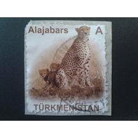 Туркменистан 2007 гепард