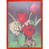 Цветы. Подписанная. 1990 года. Дергилева. # 163.
