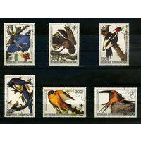 Центальноафриканская Республика 1985г, птицы, 6м.