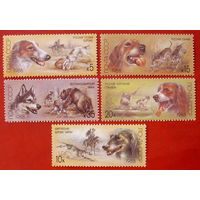 СССР. Отечественные породы охотничьих собак. ( 5 марок ) 1988 года.