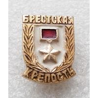 Брестская Крепость - Герой. ВОВ #0182-WP4