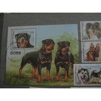 Марки - фауна собаки Сомали 1997 6 марок и блок