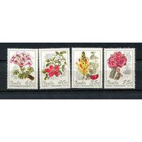 Намибия - 1994 - Цветы - [Mi. 772-775] - полная серия - 4 марки. MNH.