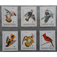 Венгрия фауна птицы 1984