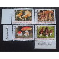 Македония 1997 грибы полная серия