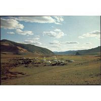 Монголия Лагерь сельхозкооператива